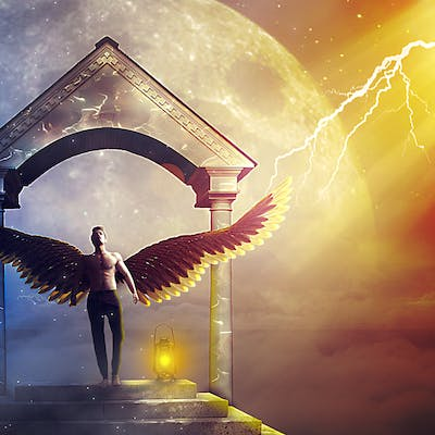Wings – Manipulation Art