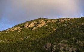الجبل الاخضر