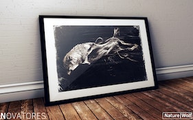 THE WOLF – NATURE SERIES
