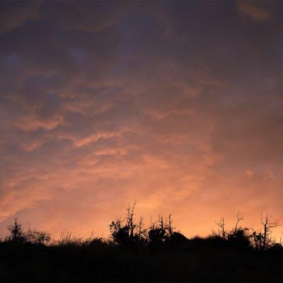 سماء ملونة