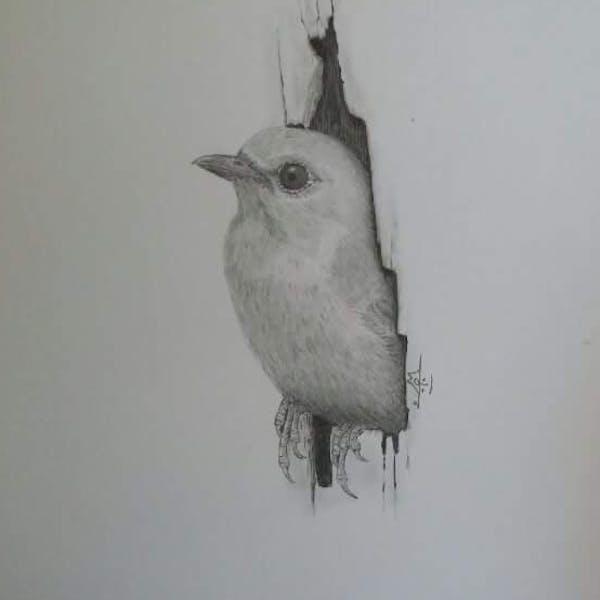 من رسوماتي المتواضعة