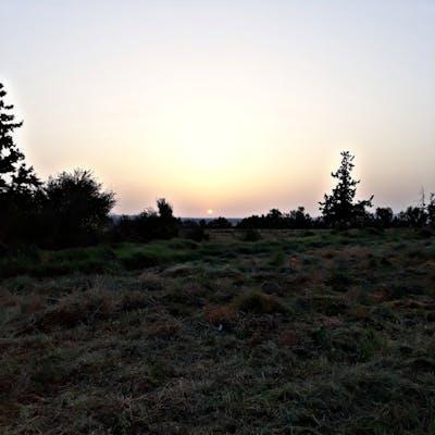 شرووق شمس