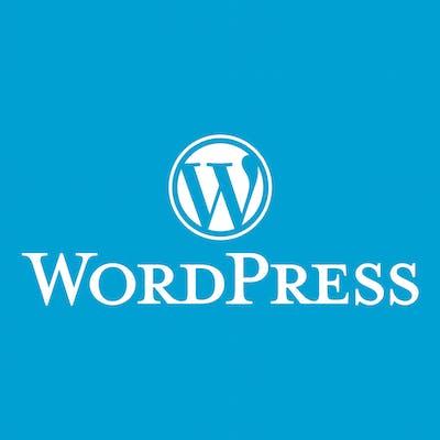 دعم فني لمنصة ووردبريس Wordpress